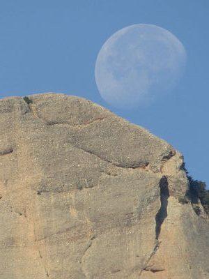 Ser Cráneo Oblongo y Luna